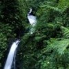 Eco Tours in Costa Rica