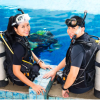 Scuba Certification Options in Costa Rica