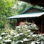 Introduction – Costa Rica Eco Lodges