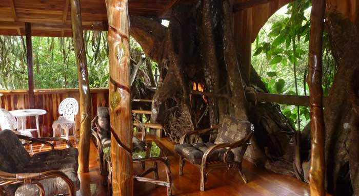 Topo s tree house for Costa rica tree house rental