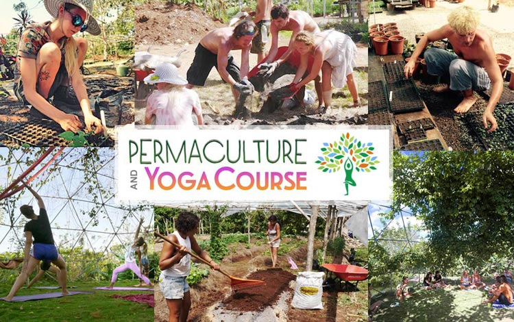Permaculture-Yoga-Program