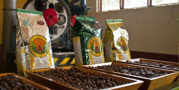 Costa Rica Best Coffee Tours